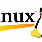 El Kernel Linux cumple 25 años